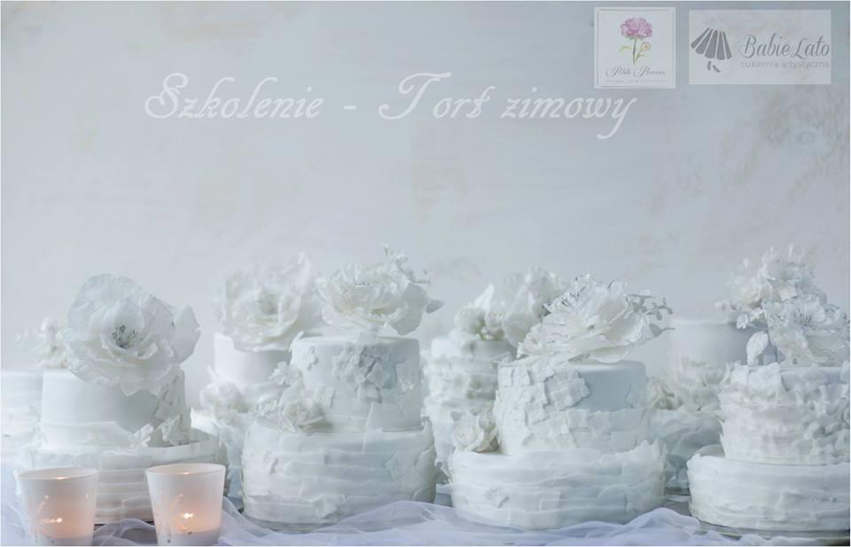 Szkolenie zimowe - tort na zamówienie Warszawa